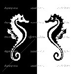 depositphotos_8827742-Vector-seahorse-isolated-on-white-and-black-background.jpg